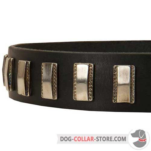 Exquisite Vertical Nickel Plates on Designer Leather Dog Collar