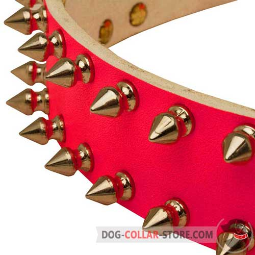 Nickel Plated Spikes on Pink Leather Dog Collar