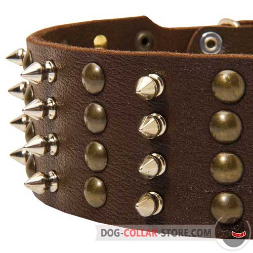 Decorations on Leather Dog Collar
