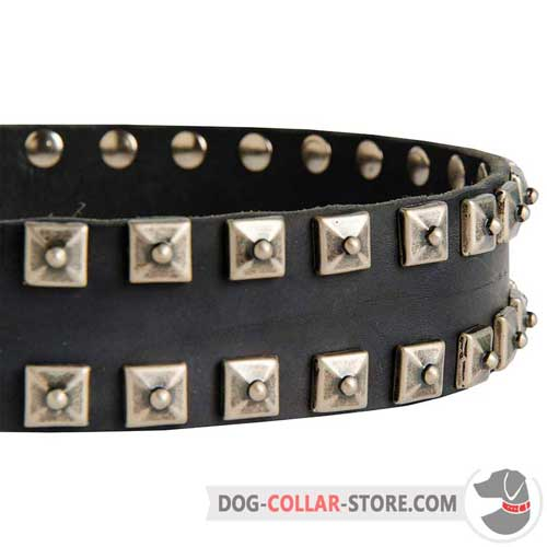 Hand-Set Nickel Studs on Designer Walking Leather Dog Collar