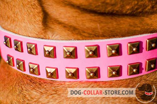 Nickel Studs on Easy Adjustable Pink Leather Dog Collar
