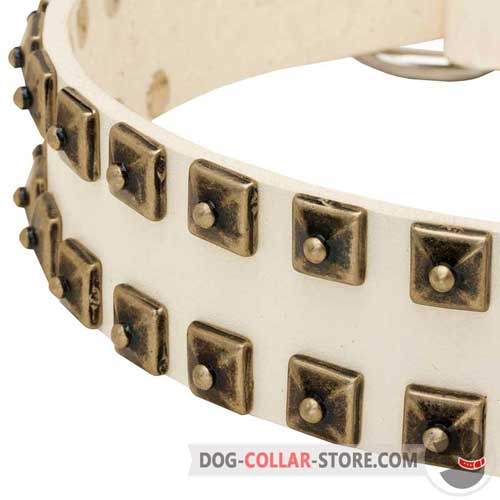 Hand-Set Studs on Fashion White Walking Leather Dog Collar