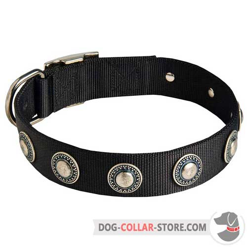 Adjustable Decorated Nylon Dog Collar for Different Breeds