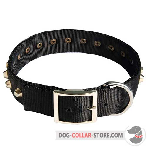 Reliable Nylon Dog Collar with Nickel Plated Buckle and Pyramids