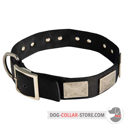 Adjustable Nylon Dog Collar with Large Plates of Silver Color