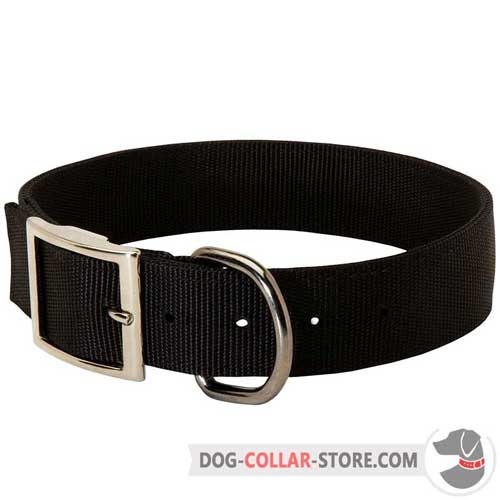 Reliable Nylon Dog Collar With Nickel Plated Buckle