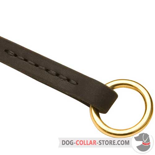 Solid O-ring on Walking Leather Dog Choke Collar
