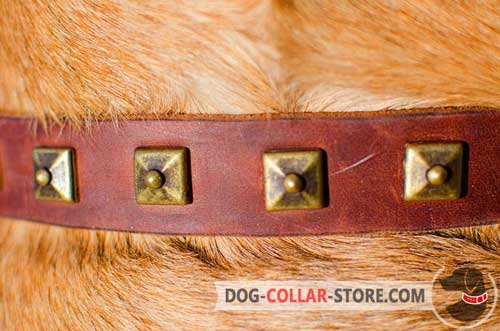 Pyramids of Original Style on Leather Dog Collar