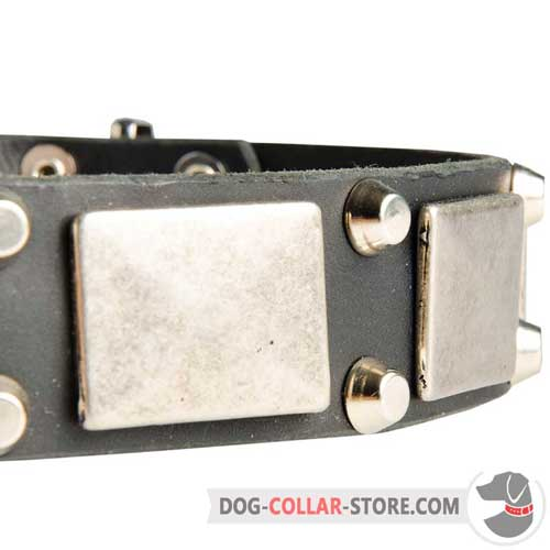 Solid Nickel Plates and Pyramids On Leather Dog Collar