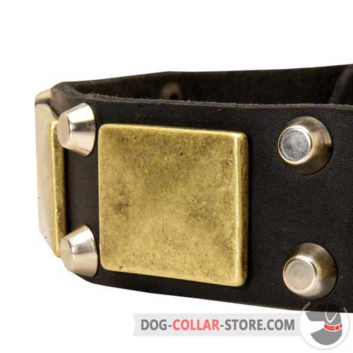 Brass Plates and Nickel Pyramids on Easy Adjustable Leather Dog Collar