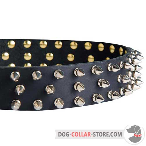 Nickel Plated Spikes on Leather Dog Collar