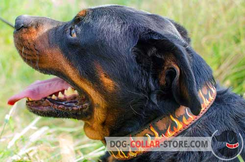 Handmade Leather Rottweiler Collar With Painting for Stylish Walking