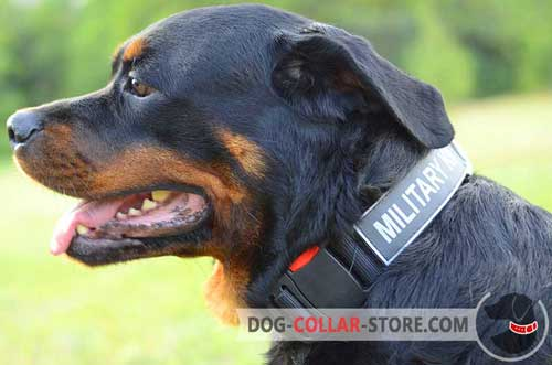 Nylon Dog Collar for Rottweiler Safe Walking