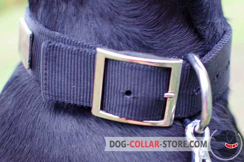Rustproof  Nickel Plated Fittings On Nylon Dog Collar