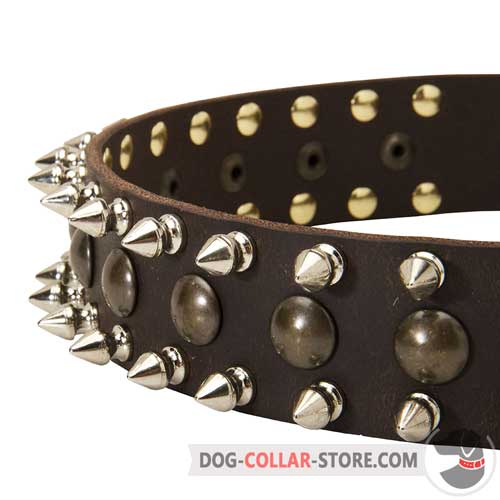 Designer Studs and Spikes on Decorated Leather Dog Collar