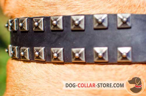 Strong Nickel Studs on Easy Adjustable Leather Dog Collar