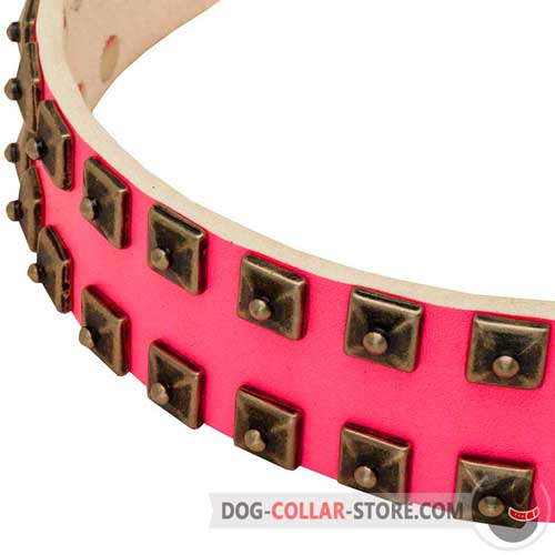 Hand-Set Old Nickel Studs with Rivets on Glamorous Pink Walking Leather Dog Collar