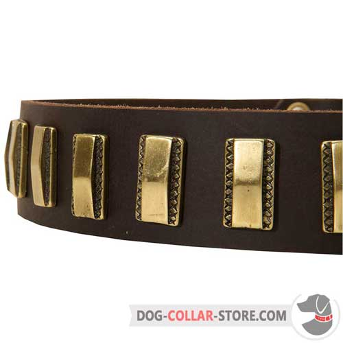 Shiny Vertical Brass Plates on Fashion Leather Dog Collar for Walking