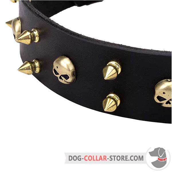 Everyday Dog Walking Leather Collar with exclusive adornment