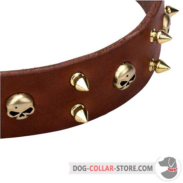 Leather Dog Collar with brass hardware