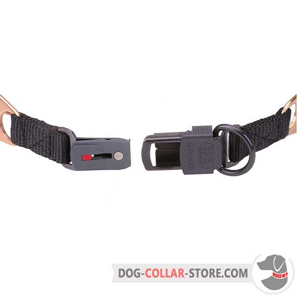 Click lock buckle on dog prong collar