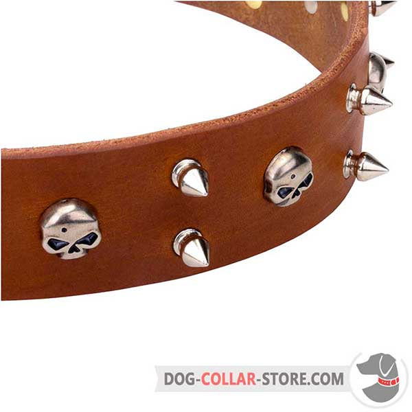 Leather Collar for Dogs with Original Nickel-Plated Decorations