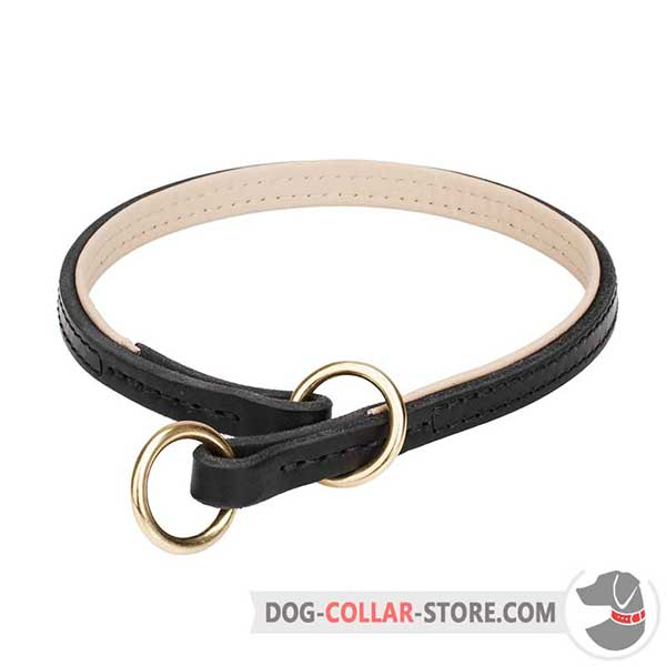 Leather Dog Slip Collar with Nappa Padding