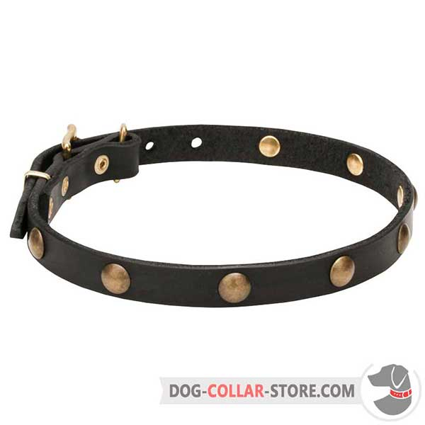 Dog Collar, 3/4 inch wide leather strap