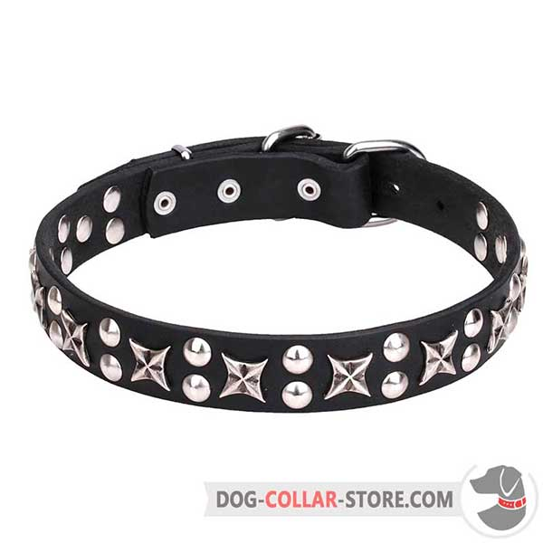 Decorated Dog Collar for walking and training