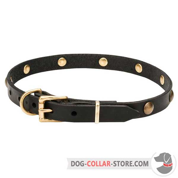 Leather Dog Collar, reliable belt buckle