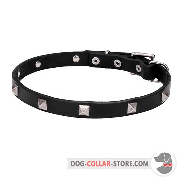 Dog Collar decorated with shiny pyramids