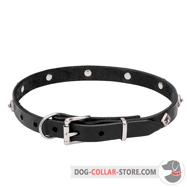 Dog Collar for Meduim and Large Breeds, chrome plated buckle