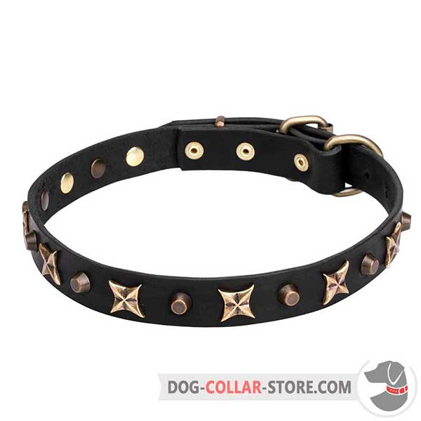 Leather Collar for walking, narrow strap