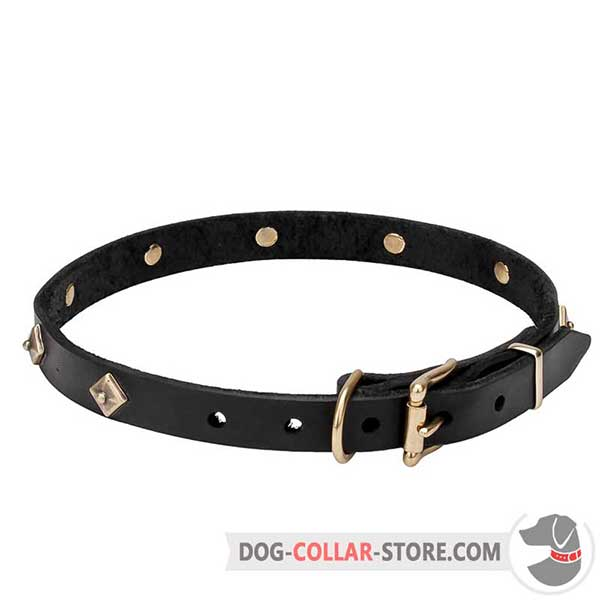 Dog Collar, brass hardware