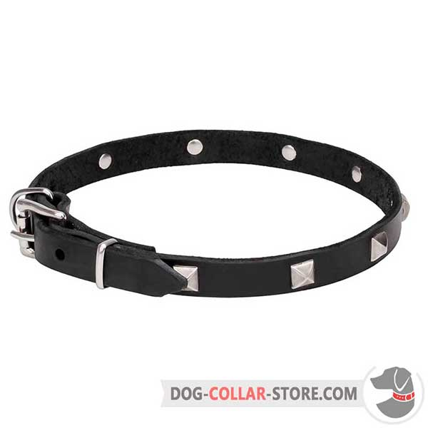 Dog Collar of genuine leather with pyramids