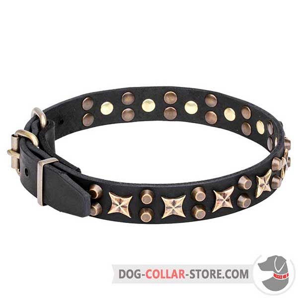 Leather Collar for walking and training, brass fittings