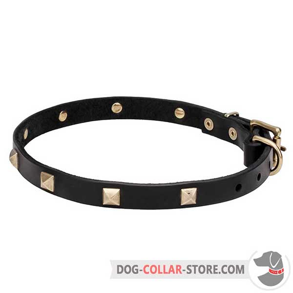 Dog Collar decorated with decorative pyramids