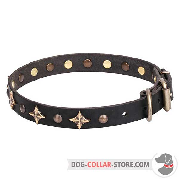 Decorated Dog Collar for walking