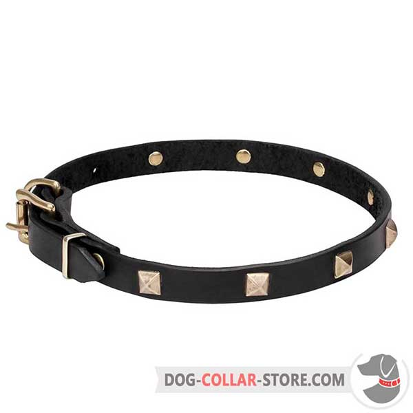 Dog Collar of full-grain leather with brass plated pyramids