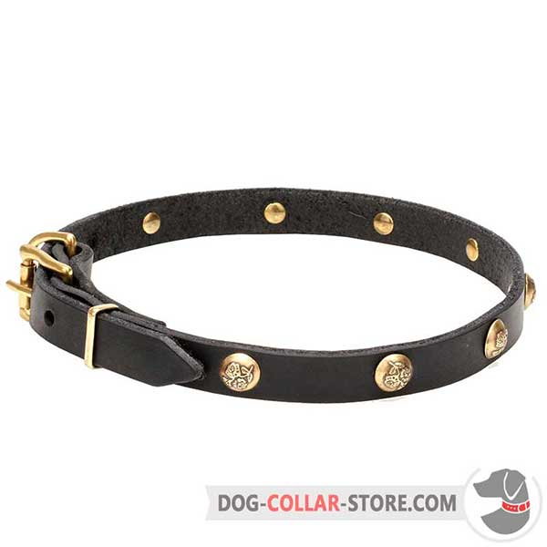 Dog collar for walking, studs with engraved flowers