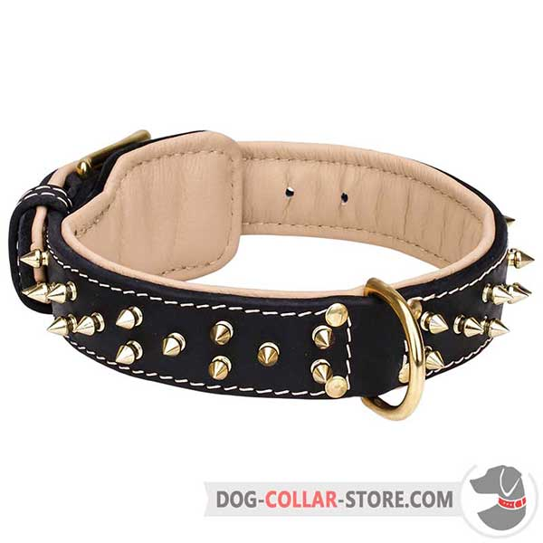 Strong Leather Dog Collar with decorative spikes