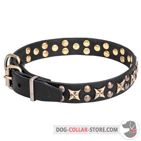 Leather Collar with decorative stars and studs