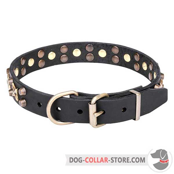 Dog Collar with strong brass hardware