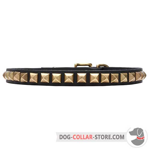 Lovely Dog Collar, brass plated pyramids