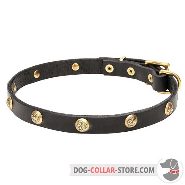 Leather Dog Collar, riveted decorations