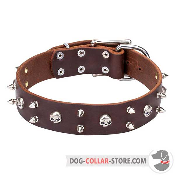 Everyday Walking Leather Dog Collar with unique adornment, brown
