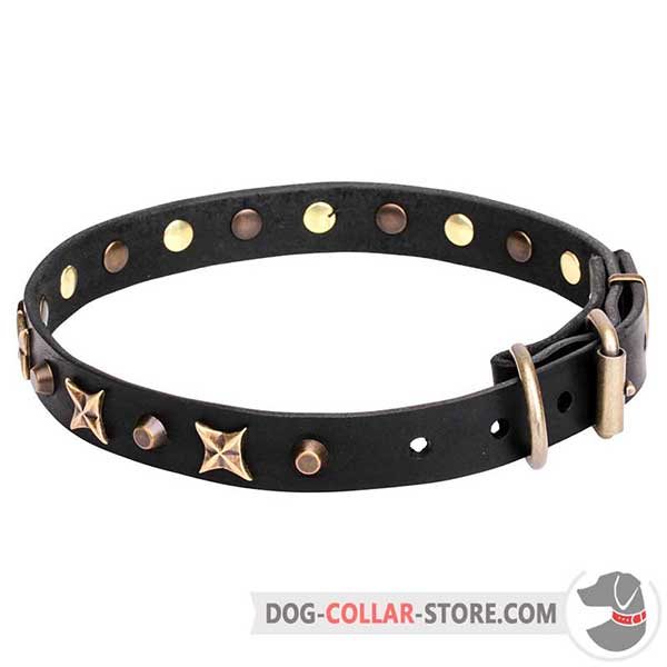 Leather Collar with decorative stars and cones