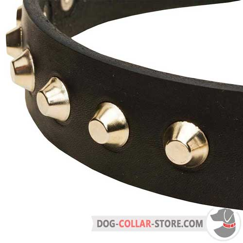 Leather Walking Collar for Dogs with Nickel-Plated Cones