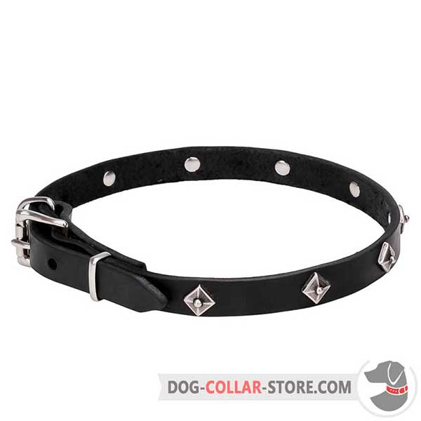 Dog Collar, narrow leather strap