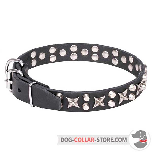 Leather Collar for walking, nickel plated fittings